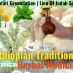 Ethiopian Traditional Herbal Medicine | Botanica