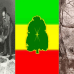Rastafari Gardening | Gardening in Aiyasus Kristos, Allmighty Son of The Heavenly Father