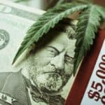 3 Pot Stock Investments to Watch Now