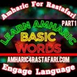 Learn Amharic Basic Words Part 1 Instagram